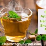 Best Ayurvedic Herbs List – Should Not Miss